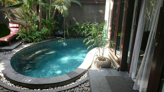 The Bali Dream Suite Villa : Pool