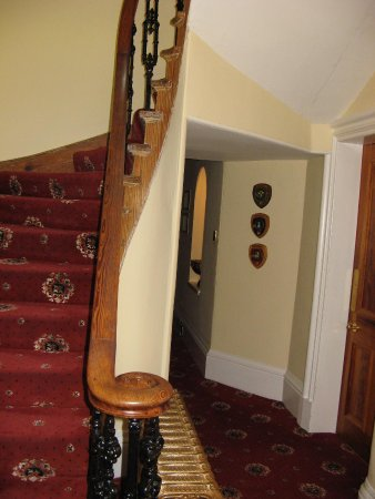 Buccleuch Guest House : inside by staircase