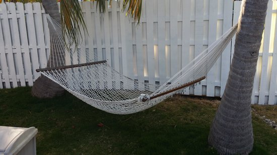 Little Conch Key: Hammock