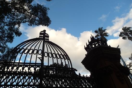 Royal Botanic Gardens: the park