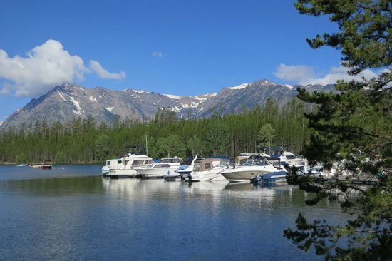 Colter Bay Village: View from Marina