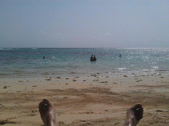 Sirenis Punta Cana Resort Casino & Aquagames : Sun Lounger view