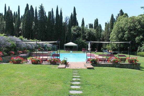 Villa Il Trebbio: pool area