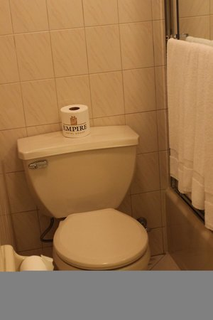 Travel Inn Hotel New York : Toilet