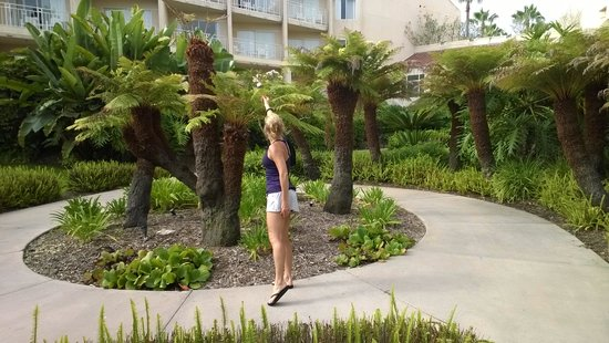 Loews Coronado Bay Resort: walking garden