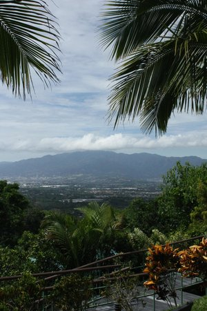 Hotel Buena Vista: Views of surrounding areas...