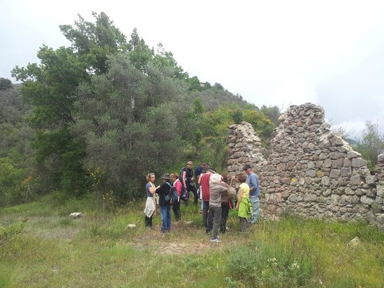 eco sejour ayurvedique Vedicare: groupe en visite à Tournefort