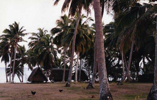 Crusher Bar: Aitutaki bungalows