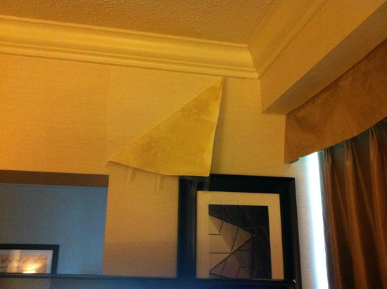 Sandman Signature Vancouver Airport Hotel & Resort: Peeling Wall Paper