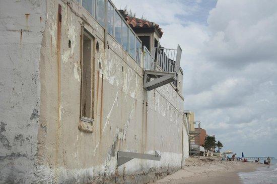 Palm Beach Oceanfront Inn: vu de l'hotel de la plage