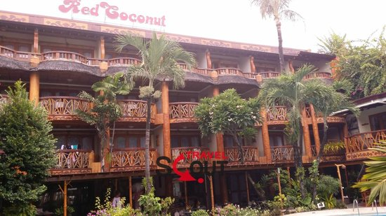 Red Coconut Beach Hotel: the Hotel