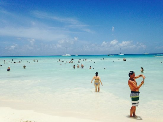 The Westin Puntacana Resort & Club: breathtaking ...you can stand in the water