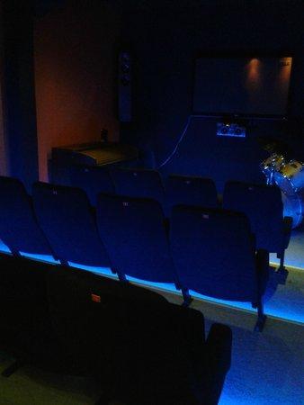 L'Incontournable - Villa de Luxe a Sarlat : SALLE CINEMA
