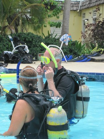 The Palms at Pelican Cove : free Discover Scuba in hotel pool