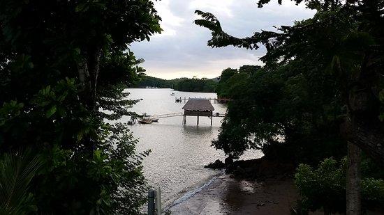 Hotel Bocas del Mar : Garden view