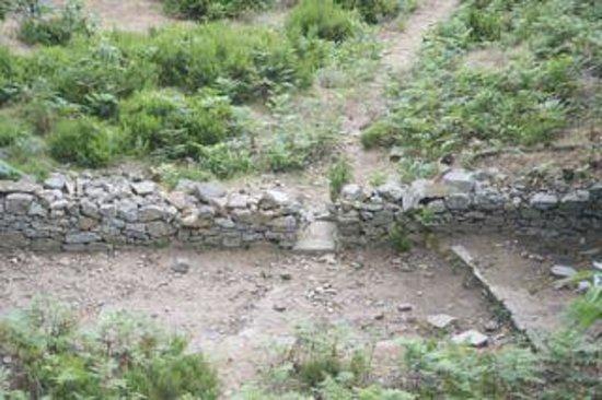 Monte Capanne: sentiero