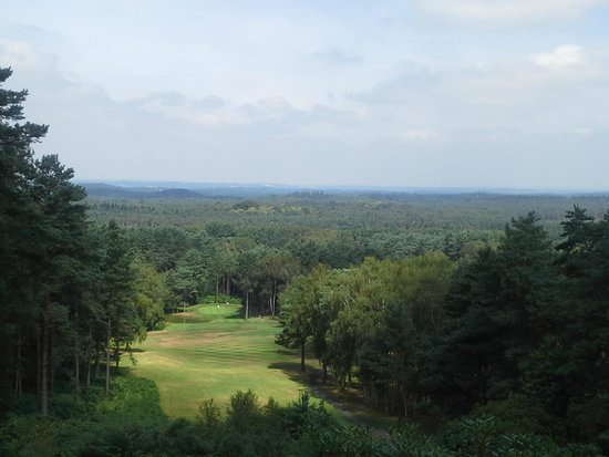 Old Thorns Manor Hotel & Golf Course : View from the 5th Tee.