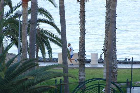 HOVIMA Altamira: утренние пробежки по набережной