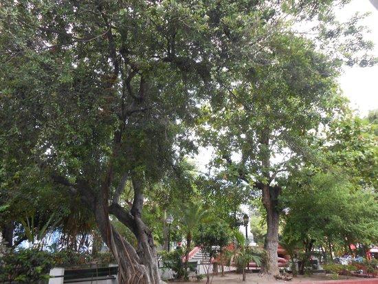 Muraille : Plaza