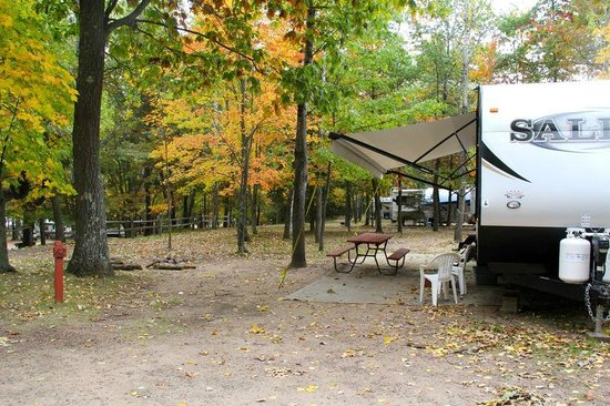 Lynn Ann's Campground : campsite