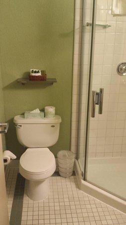 Hotel Fusion: Banheiro Vaso