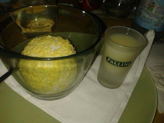 La Bottega Del Vino: Semifreddo al limonello