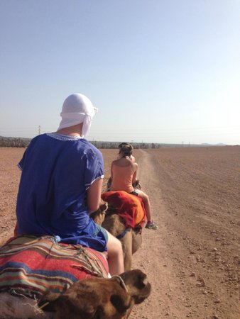 Kasbah Le Mirage : Camel riding - a must!