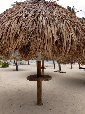 Hotel Riu Palace Aruba: beach view