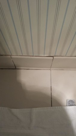 Marriott Vacation Club Pulse San Diego: mold in bathroom and tile coming off wall