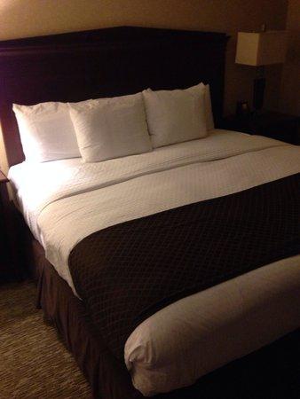 Doubletree by Hilton Atlanta Roswell: Gloomy room