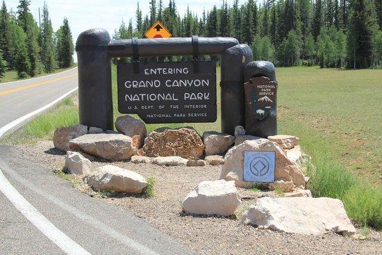 Grand Canyon North Rim: The Entrance