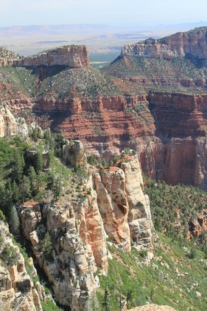 Grand Canyon North Rim: A View