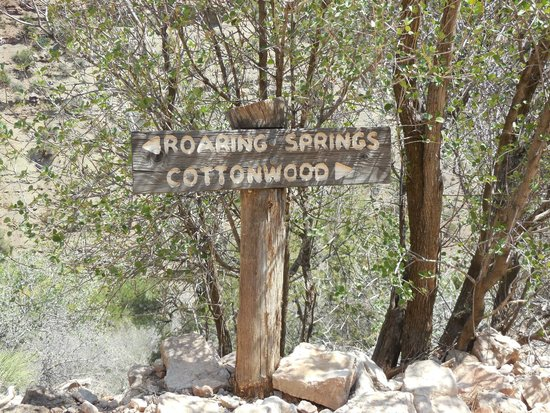 Grand Canyon North Rim: As far as we went on a day trip - Roaring Springs