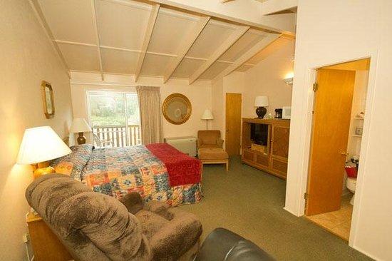 Alpine Trail Ridge Inn : room