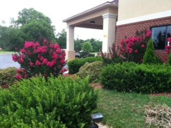 Sleep Inn and Suites: Outdoor Garden