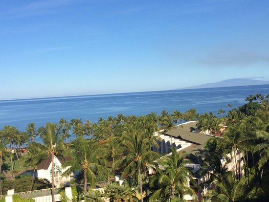 Grand Wailea - A Waldorf Astoria Resort: Morning view from our room!