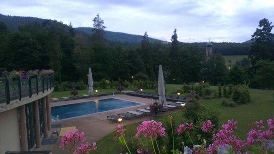 Les Violettes Hotel & Spa Alsace, BW Premier Collection : Vue de la chambre
