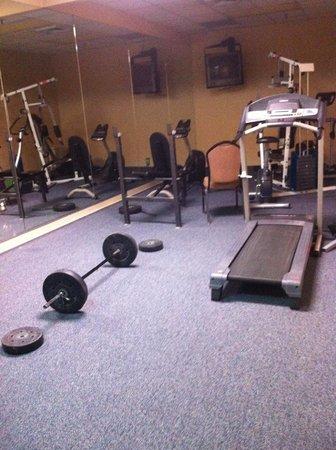Stratford Hotel & Conference Center: Gym