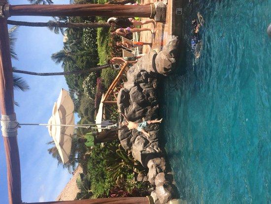 Grand Wailea - A Waldorf Astoria Resort: Max Tarzan!!!
