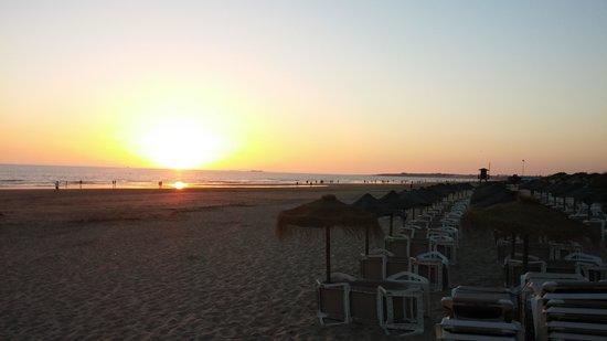 Hipotels Barrosa Garden: En la Playa con Hamacas...