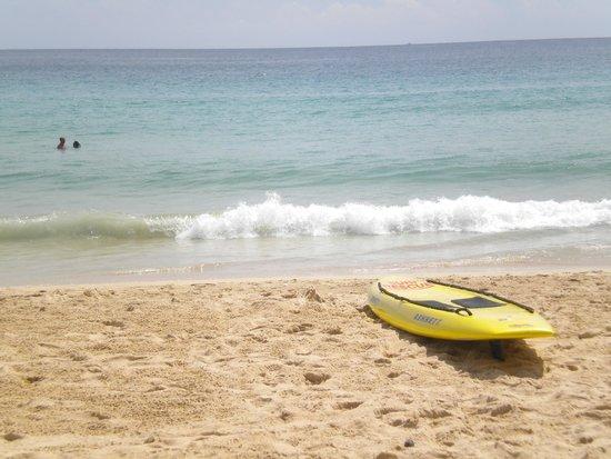 Nai Harn Beach: Surfboard by the sea