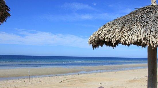 Sonoran Sun Resort: Beach view.