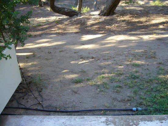 Pullman Timi Ama Sardegna : garden view