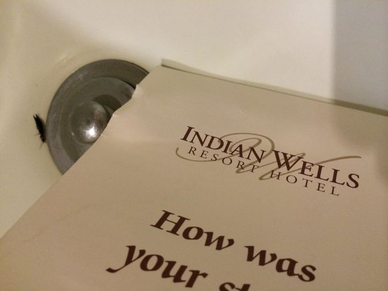 Indian Wells, CA: A visitor in our bathtub (room 127)