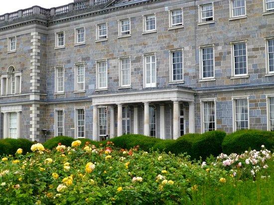 Carton House Hotel & Golf Club: Lovely rose garden in front of Carton House