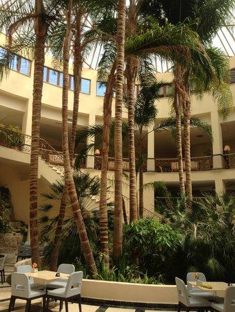 Atlantica Imperial Resort & Spa: Palm trees
