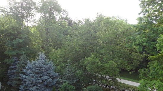 Mill Creek Hotel: View from the third floor Creekside