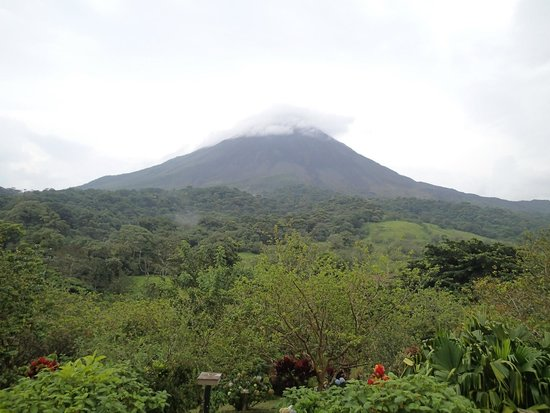 Arenal Kioro Suites & Spa : View from the room