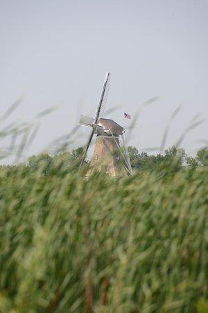Windmill Island Gardens: De Zwaan off in the distance through the fields.