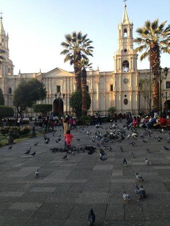 Plaza de Armas: Arequipa